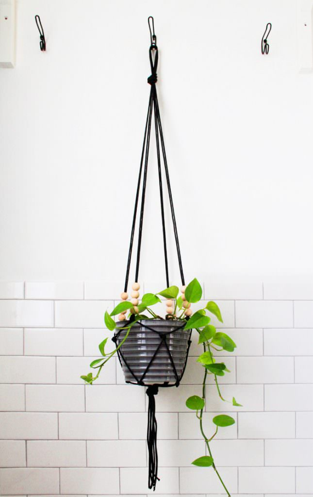 A black hanging macrame plant holder
