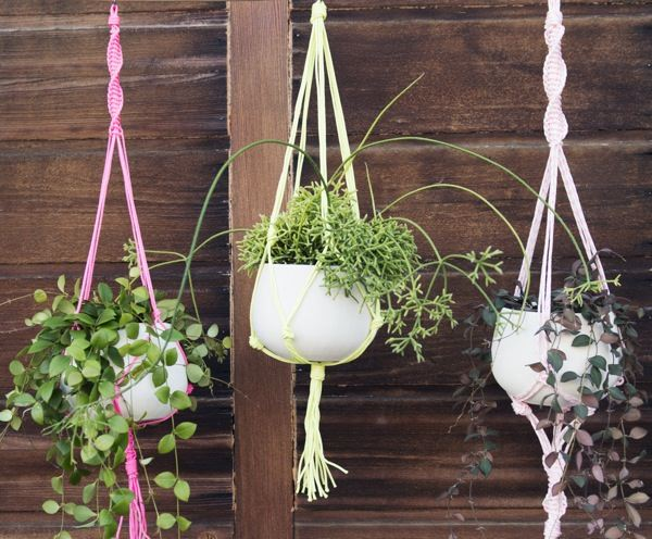 Three outdoor macrame plant holders