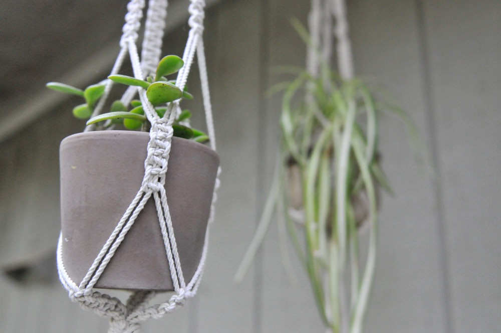 Two macrame plant holders