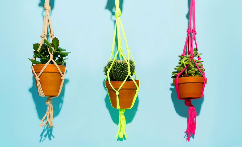 Three hanging plant hangers